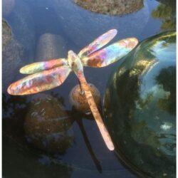 Kobber guldsmed som flyder i vand