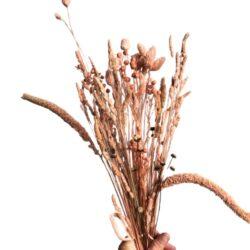 Tørrede blomster græssortiment - Laks