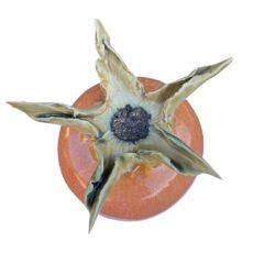 Hybenrose knop