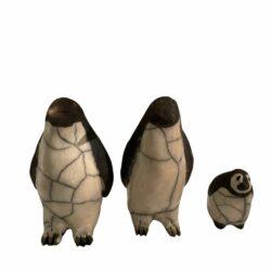 Raku pingvin familie